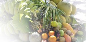 fruits-page-marque-ti-bio-les-arranges