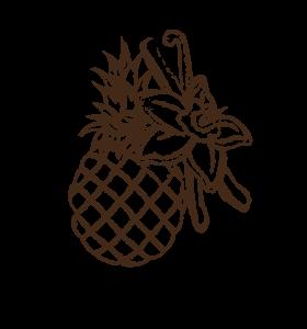 tibio-les-arranges-ananas-vanille