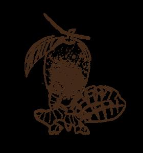 tibio-les-arranges-mangue-gingembre